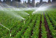 تجهیز ۱۸ هزار هکتار از اراضی کشاورزی البرز به سیستم های نوین آبیاری