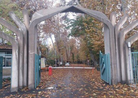 ورود دادستانی به ماجرای قطع درختان پردیس کشاورزی دانشگاه تهران